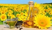 Зростання цін на пальмову олію підтримує ринки соняшникової олії та соняшнику