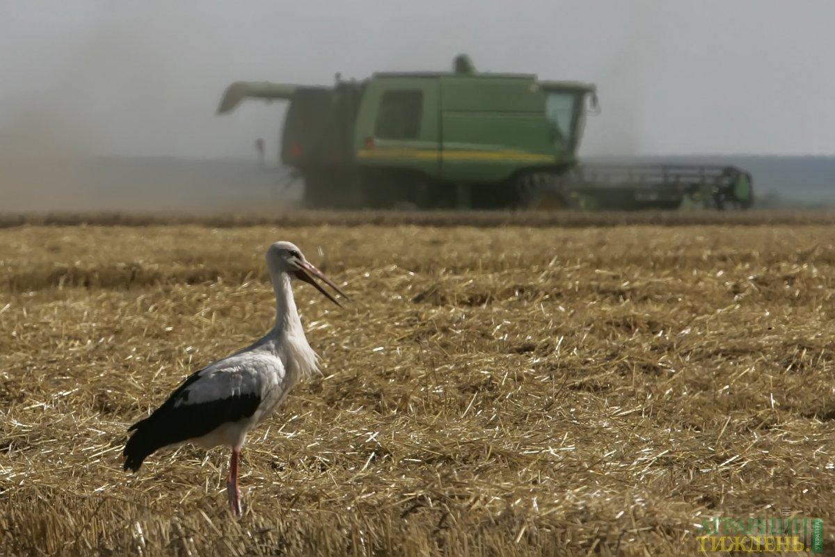 Нацрада реформ підтримає аграріїв у боротьбі з рейдерством та тіньовою орендою землі