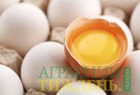 С начала лета яйца подешевели на 20,2%